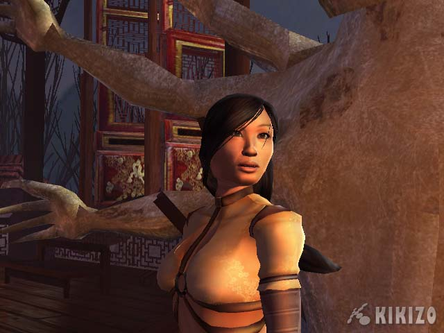 Kikizo | News: E3 2004: Microsoft's Xbox Line-Up